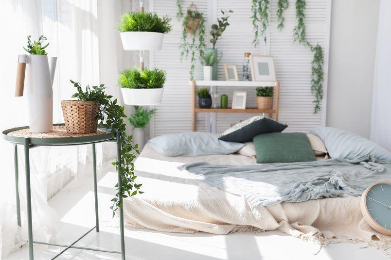 Planten voor in de slaapkamer