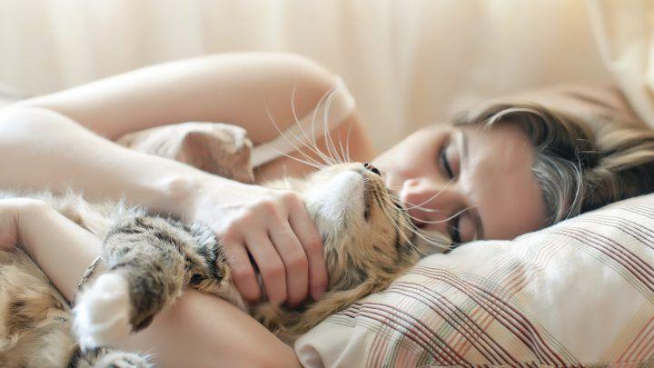 slapen met je huisdier, is dat wel zo'n goed idee?